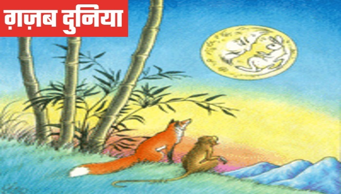 www.gajabdunia.comThe Hare on the Moon Jataka Stories In Hindi